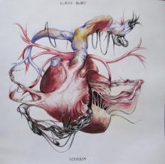 elastic heart net